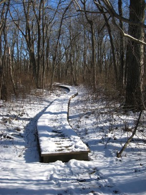 Norman BIrd Sanctuary Path