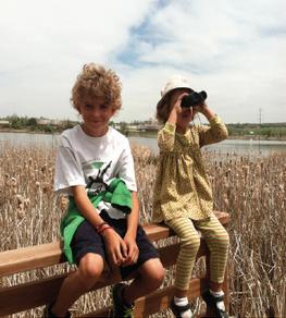 Kids for birdathon